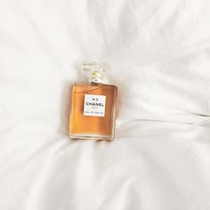 Outstanding Chanel No. 5 The post Chanel No. appeared first on Beauty . Chanel Perfume, Best Perfume, Chanel No 5, Coco Chanel, Korean Aesthetic, Luxury Beauty, Smell Good, Perfume Bottles, Cosmetics