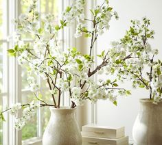 10 Easy Pieces: Eerily Lifelike Faux Plants for the Home