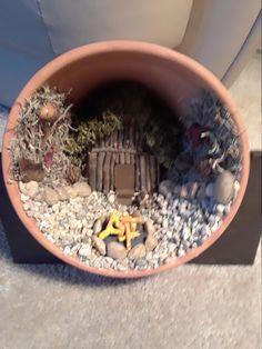 Large Fairy Garden, Fairy Garden Houses, Gnome Garden, Fairy Garden Images, Fairy Garden Pots, Garden Shade, Diy Fairy Door, Diy Fairy House, Small Garden Design