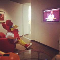 Fredbird knows what's up!