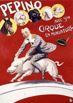 Pepino Miniature Circus Horse Pig Poster Print | eBay