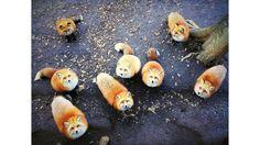 """A americana Jessica Wu, blogueira de fotografia no iPhone, obteve o primeiro lugar na categoria """"Animais"""" com essa foto registrada em um santuário de raposas em Taiwan. """"Elas (raposas) criaram uma cena muito dramática quando todos passaram a me olhar, por isso tirei meu iPhone para capturá-la imediatamente"""", assinala."""