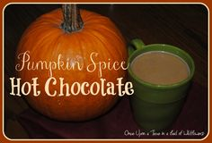 Pumpkin Spice Hot Chocolate via Once Upon a Time in a Bed of Wildflowers