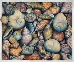 Sea Treasures Drawing, Prismacolor Pencils