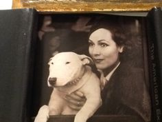Dolores Del Rio with her English Bull Terrier, Faultless of Blighty,1936