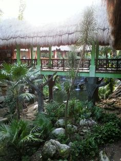 Iberostar Tucan, Riviera Maya, Mexico