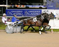 New Zealand:  Mark Purdon wins 100th Running of NZ Derby (with FLAIR!)