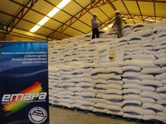 Bolivia Informa: Emapa planea abrir cadena de supermercados