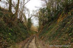 holle wegen, kom je hier regelmatig tegen, nooit volledig van hun groene kleur beroofd door de seizoenen, kan men zich eventjes in de middeleeuwen wanen. Wachtend op de volgende koets of hooikar.