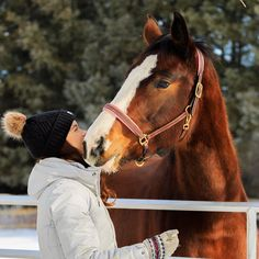 What is your relationship with your horse like on the ground? When I reflect on my experience as a junior rider there wasn't too much…