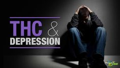Subjects were shown a number of faces expressing different emotions and asked whether the person was happy or fearful during a functional MRI. This task was used to gauge whether THC would effect how the subjects perceived the emotions of others. Those given THC were less accurate at identifying negative emotions and showed no loss in accuracy with respect to the faces with positive emotions. THC decreased brain activity in response to the negative stimuli, but not for positive stimuli.