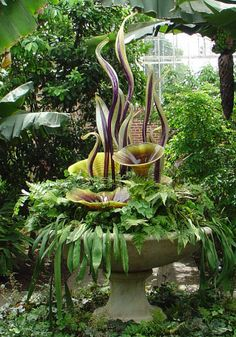 The forms and colors in some of the glass pieces imitate the plant growth around them. In this enormous container planting, it's hard to see where the plants leave off and the artwork begins. Other pieces are smaller in scale, tucked into nooks under arching greenery