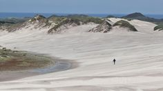 The open space and dunes of West Jutland, Denmark