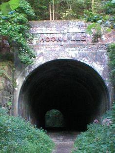 The Moonville Tunnel is located off Shea Road in the Zaleski Forest in Vinton County. If youd like directions, click here.   The old railroad tunnel is located along Raccoon Creek in the one of Ohios densest wooded areas - the Zaleski Forest. The woods around it is so dense that you cant even see the tunnel until youre on the path right in front of it!   The small mining town of Moonville, which was founded in the 1850s, was once located around the tunnel which was used by the