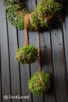 "Creative idea using the moss on the end of the ""ribbon""; can easily be used on many types of wreaths"" ~ pine cones, flowers- endless possibilities!"