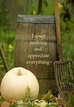 Expect nothing.....Appreciate Everything