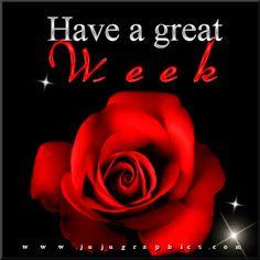 New Week Quotes, Good Week, Tags, Feelings, Rose, Flowers, Plants, Blog, Pink