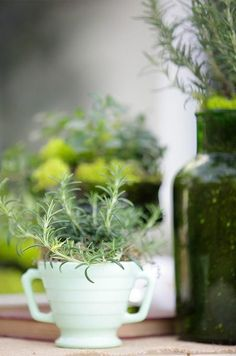 Herbs in centerpieces || Colin Cowie Weddings