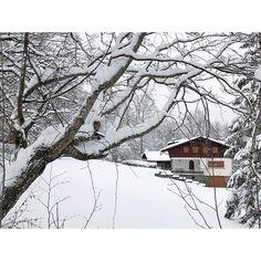A beautiful glimpses of mountain landscapes. 🌨🏔 • • • #️⃣ #instamountain #instalandscape #fashionsnobber #tbt #mountaintravel #landscapeoftheday #landscapephotography #abetone #winterlandscape #winter #snow #glimpses #mountain #mountainmood #montagna #paesaggioinnevato #paesaggiomontano #scorcio #neve