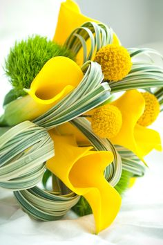 Yellow Calla Lilly, Spider Plant Leaves