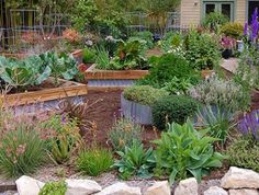 I like the raised beds. wood and corrugated tin. The mix of square and round is nice.