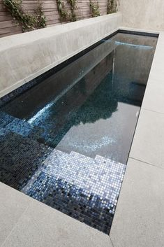 Image 7 of 32 from gallery of Albert Park House / Hindley & Co. Photograph by Shannon McGrath Small Swimming Pools, Small Backyard Pools, Small Pools, Swimming Pools Backyard, Swimming Pool Designs, Swimming Pool Architecture, Metal Garden Gates, Piscina Interior, Small Pool Design
