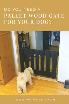 Do you need a pallet wood gate for your dog? Today my wife and I are collaborating on a quick project. We are going to show you how to build a wooden gate for your dog with pallet wood. We have been using a baby gate to keep our dogs out of an area of … Read More » #Dogs, #Gate, #RecyclingWoodPallets #AnimalPalletHousesPalletSupplies, #DIYPalletVideoTutorials