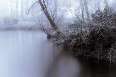 Frozen & Calm