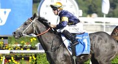 Champion sprinter Chautauqua has arrived safely in Hong Kong ahead of his first appearance on the international stage.