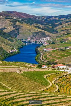 Exploring the Douro Valley offers stunning vistas, delicious port and wine, and endless vineyards. Let's not forget the delectable Portuguese gastronomy that should absolutely be on your list of things to do when you travel to Portugal next. | Blog by the Planet D | #Travel #Wine #Portugal | underrated travel destinations | travel to portugal | portugal honeymoon Day Trips From Porto, Famous Wines, Wine Tourism, Douro Valley, Natural Park, Portugal Travel, Greatest Adventure, Portuguese, Exploring