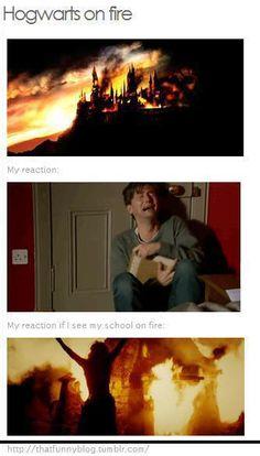Harry potter, that's so true!