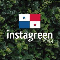 "InstagreenLatam on Twitter: ""#Instagreenlatam #jardinvertical #greenwall #follajesartificiales #panama #arquitectura #decoracion #espaciointerno #construccion #verde https://t.co/ckwZTTibUj"""