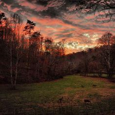 Saint Albans sunset taken by Robin Filipiak