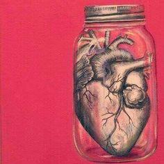 Jar of hearts Jar Of Hearts, Brain And Heart, Human Body Parts, Heart Illustration, Anatomical Heart, Heart Images, Anatomy Art, Heart Art, Art Design