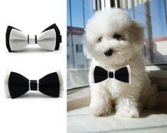 Adorable Dog Cat Pet Puppy Kitten Bow Tie Necktie Collar Clothes(Black/White) #Unbranded