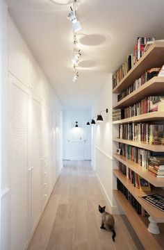 Love the shelves and lighting... cat's cute too :)