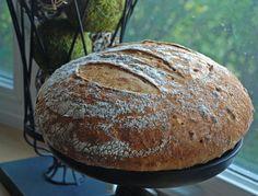 ricotta cheese potato sourdough.  And it's bread!