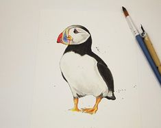 This is an open edition professional quality giclée print of my own ink and watercolour illustration of the Atlantic puffin. The perfect gift for bird and puffin lovers. The print is size - 148 mm x 210 mm (portrait). Your print will be signed in . Bird Prints, Wall Art Prints, Fine Art Prints, Black Cat Art, Wildlife Art, Bird Art, Botanical Prints, Watercolor Illustration, Giclee Print