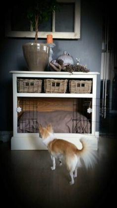 Leuke plek voor de hond