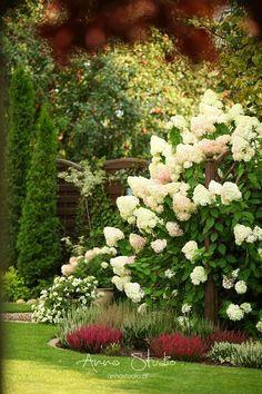 Dziś na szybko... tylko jeden widoczek...czyżby jesienny ?!;) Pozdrowienia różowe zostawia Anna :)