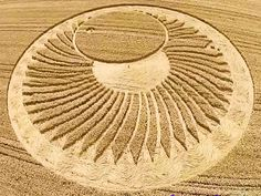Crop Circle at Ravenna Waterski Club, nr Cervia, Italy. Reported 20th June 2015