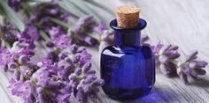 Lavender oil benefits go way beyond helping you relax. Here are 10 lavender oil uses to combat life's peskiest home, beauty, and health problems. Lavender Oil Benefits, Oils For Sleep, Best Essential Oils, Natural Herbs, Natural Health, Lavender Flowers, Lavender Tea, Fragrance Oil, Caldo De Pollo