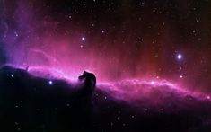 A stunning view of the Horsehead Nebula. Located just south of the Alnitak star in the Orion constellation, the Horsehead Nebula was first recorded by Williamina Fleming in Space Artwork, Wallpaper Space, Hd Wallpaper, Church Backgrounds, Space Backgrounds, Hd Space, Deep Space, Blue Space, Horsehead Nebula