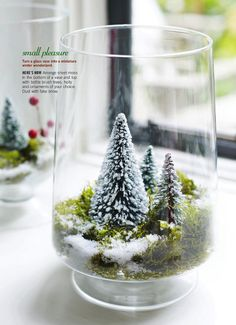 Turn a glass vase into a miniature winter wonderland. Too late for this Christmas but will do next year. Directions: Arrange sheet moss in the bottom of a vase and top with bottle brush trees, holly and ornaments of your choice. Dust with fake snow. Noel Christmas, Modern Christmas, Winter Christmas, All Things Christmas, Christmas Ornaments, Christmas Mantles, Miniature Christmas Trees, Christmas Goodies, Vintage Christmas