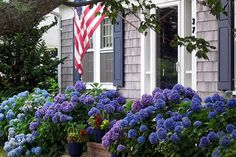 House Beautiful: Lavender and Purple | ZsaZsa Bellagio - Like No Other