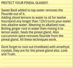detox pineal gland naturally …I don't know about the crystal's, but the natural detox methods seem legit. Natural Detox, Natural Cures, Natural Healing, Health And Beauty, Health And Wellness, Health Tips, Health Facts, Health Exercise, Health Fitness