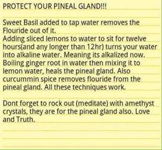 detox pineal gland naturally