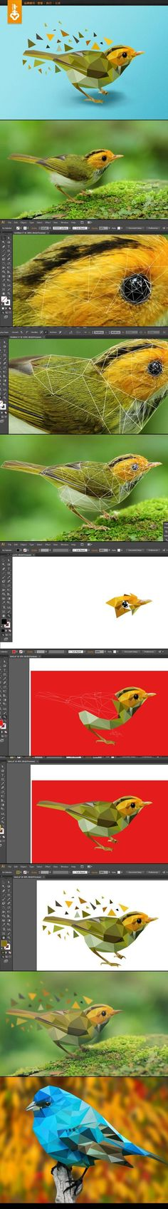1. Create a new Web document 2. File > Place a high resolution image of an animal of your choice from google (search tools>size>large) 3. Start creating triangles with your pen tool that c...