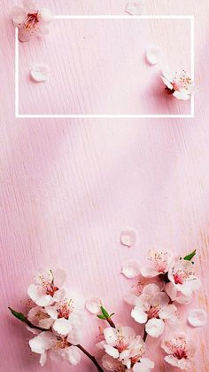 Ideas For Wallpaper Sperrbildschirm Blumen Iphone Spring Wallpaper, Frühling Wallpaper, Rose Gold Wallpaper, Wallpaper For Your Phone, Locked Wallpaper, Flower Wallpaper, Wallpaper Quotes, Animal Wallpaper, Colorful Wallpaper