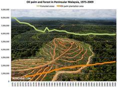 Oil palm plantation area and forested area (ha) in Peninsular Malaysia, 1975-2009